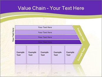 0000075561 PowerPoint Template - Slide 27