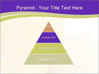 0000075561 PowerPoint Template - Slide 30