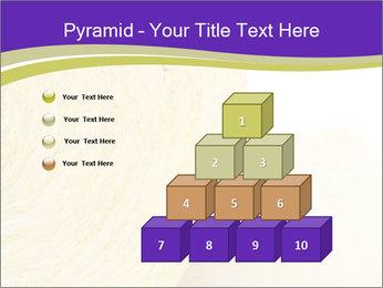 0000075561 PowerPoint Template - Slide 31