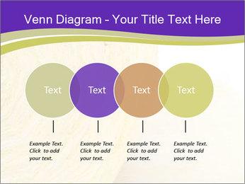 0000075561 PowerPoint Template - Slide 32
