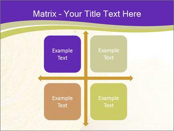 0000075561 PowerPoint Template - Slide 37