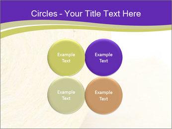 0000075561 PowerPoint Template - Slide 38