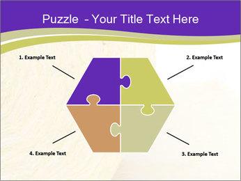 0000075561 PowerPoint Template - Slide 40