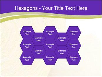 0000075561 PowerPoint Template - Slide 44