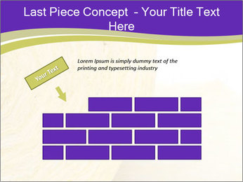 0000075561 PowerPoint Template - Slide 46
