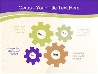0000075561 PowerPoint Template - Slide 47