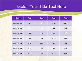 0000075561 PowerPoint Template - Slide 55
