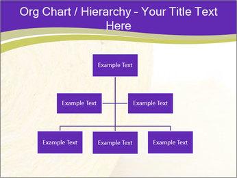 0000075561 PowerPoint Template - Slide 66