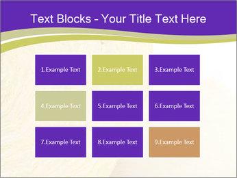 0000075561 PowerPoint Template - Slide 68