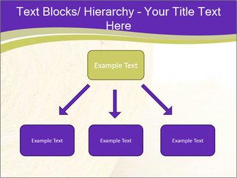 0000075561 PowerPoint Template - Slide 69