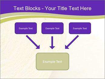 0000075561 PowerPoint Template - Slide 70
