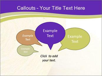 0000075561 PowerPoint Template - Slide 73