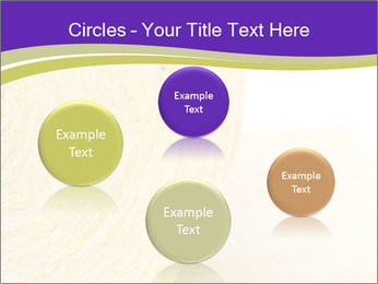 0000075561 PowerPoint Template - Slide 77