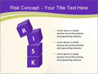 0000075561 PowerPoint Template - Slide 81