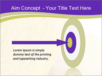 0000075561 PowerPoint Template - Slide 83