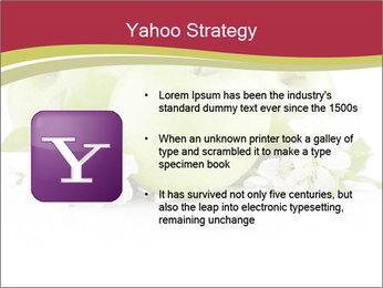 0000075564 PowerPoint Template - Slide 11
