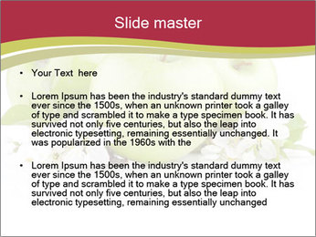 0000075564 PowerPoint Templates - Slide 2