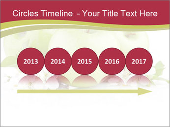 0000075564 PowerPoint Templates - Slide 29