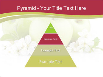 0000075564 PowerPoint Templates - Slide 30