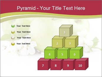 0000075564 PowerPoint Template - Slide 31