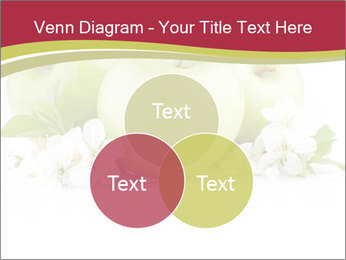 0000075564 PowerPoint Templates - Slide 33