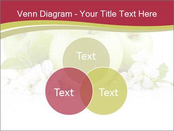 0000075564 PowerPoint Template - Slide 33