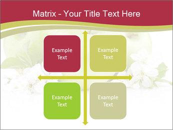 0000075564 PowerPoint Template - Slide 37