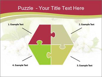 0000075564 PowerPoint Template - Slide 40