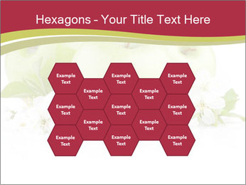 0000075564 PowerPoint Templates - Slide 44