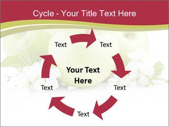0000075564 PowerPoint Template - Slide 62