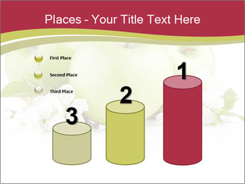 0000075564 PowerPoint Templates - Slide 65