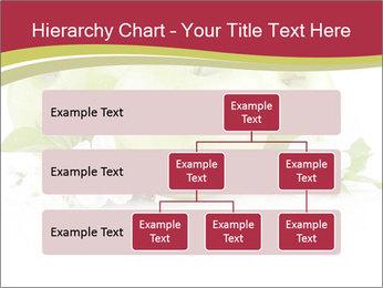 0000075564 PowerPoint Template - Slide 67