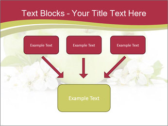 0000075564 PowerPoint Template - Slide 70