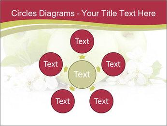 0000075564 PowerPoint Template - Slide 78
