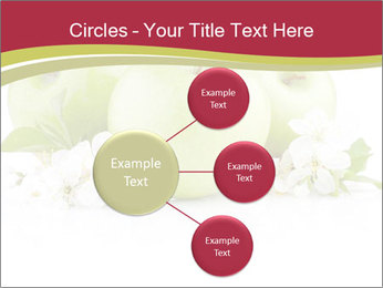 0000075564 PowerPoint Template - Slide 79