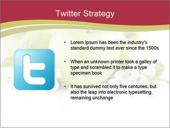 0000075564 PowerPoint Template - Slide 9