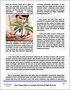 0000075565 Word Template - Page 4