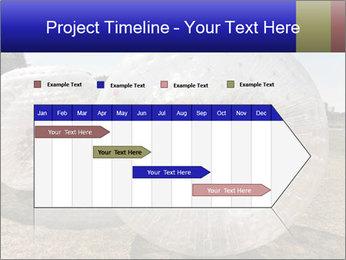 0000075567 PowerPoint Templates - Slide 25