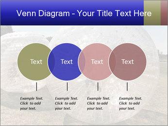 0000075567 PowerPoint Templates - Slide 32
