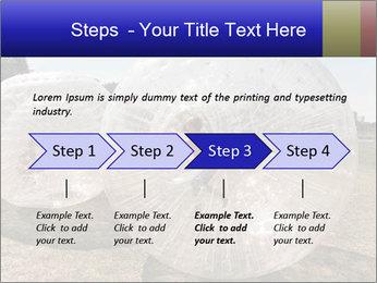 0000075567 PowerPoint Templates - Slide 4