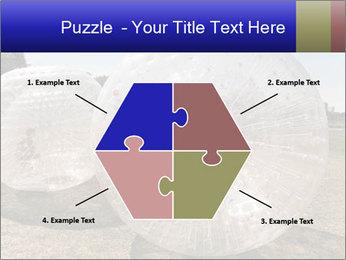 0000075567 PowerPoint Templates - Slide 40