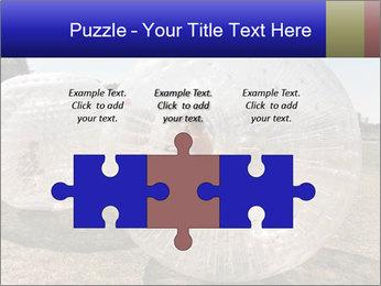 0000075567 PowerPoint Templates - Slide 42