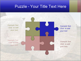0000075567 PowerPoint Templates - Slide 43
