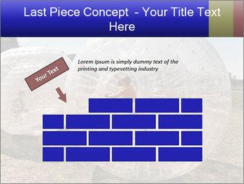 0000075567 PowerPoint Templates - Slide 46