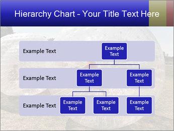 0000075567 PowerPoint Templates - Slide 67