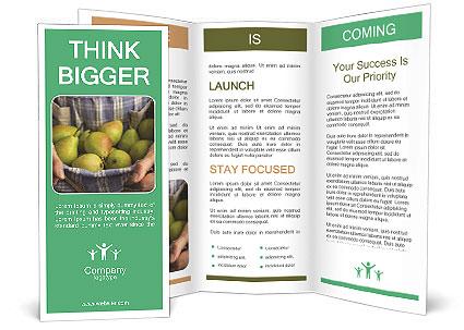 0000075568 Brochure Template