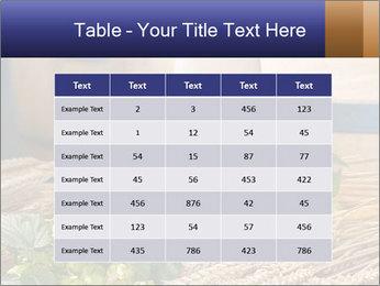 0000075569 PowerPoint Template - Slide 55