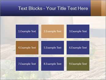 0000075569 PowerPoint Templates - Slide 68