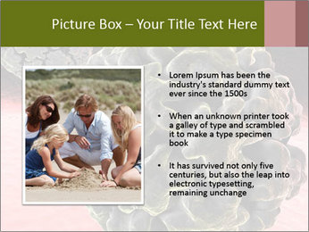 0000075575 PowerPoint Template - Slide 13