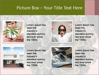 0000075575 PowerPoint Template - Slide 14